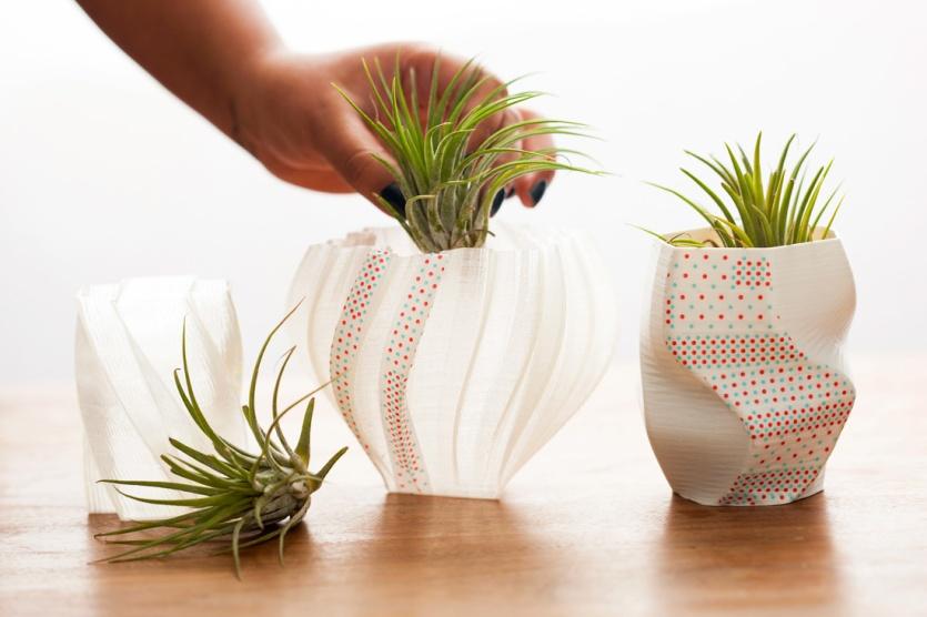3d-1-plant
