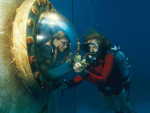 sylvia-earle-habitat-window_45011_600x450