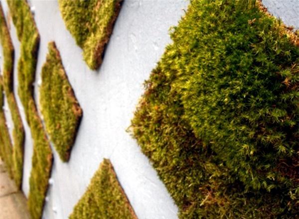 create-moss-graffiti-and-host-a-green-message-23-334