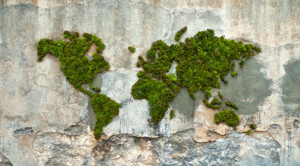 Hacer-graffiti-con-musco-vandalismo-verde-mapa